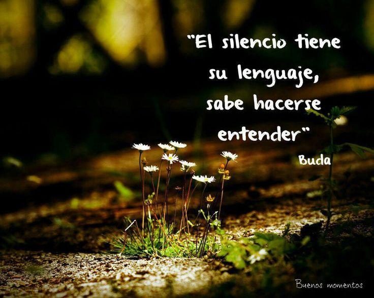 """#Buda #Frase #Paz """"El silencio tiene su lenguaje, sabe hacerse entender"""""""
