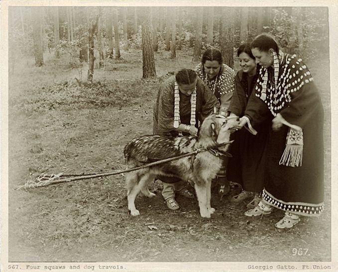 могут индейцы и собаки картинки привет