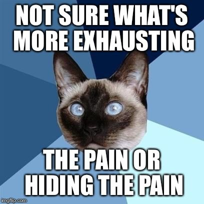 Chronic illness cat | NOT SURE WHAT'S MORE EXHAUSTING THE PAIN OR HIDING THE PAIN |