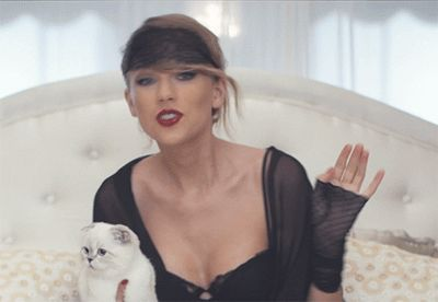 While Katy Perry Tore Up The Super Bowl, Taylor Swift Had Plenty Of Fun At Home With Her Cat! Check Their Interception Reenactment HERE!!