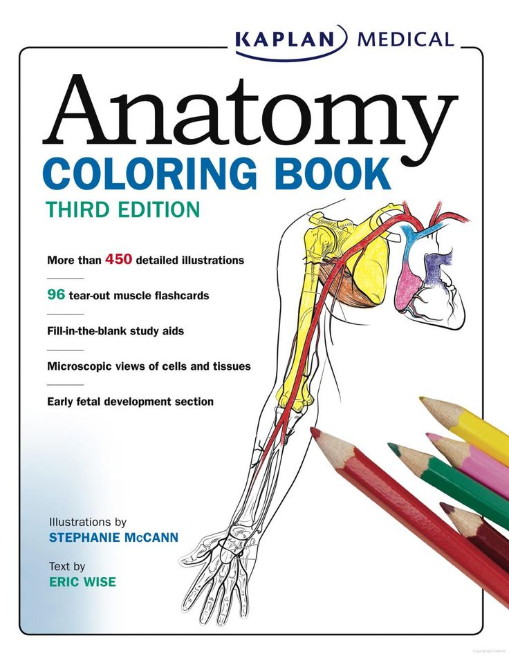 FREE: Anatomy Coloring Book on Google