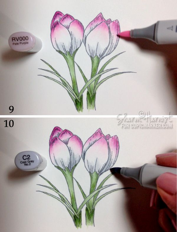 Coloring Spring Crocus with Copic Markers pt3 rv000/c2