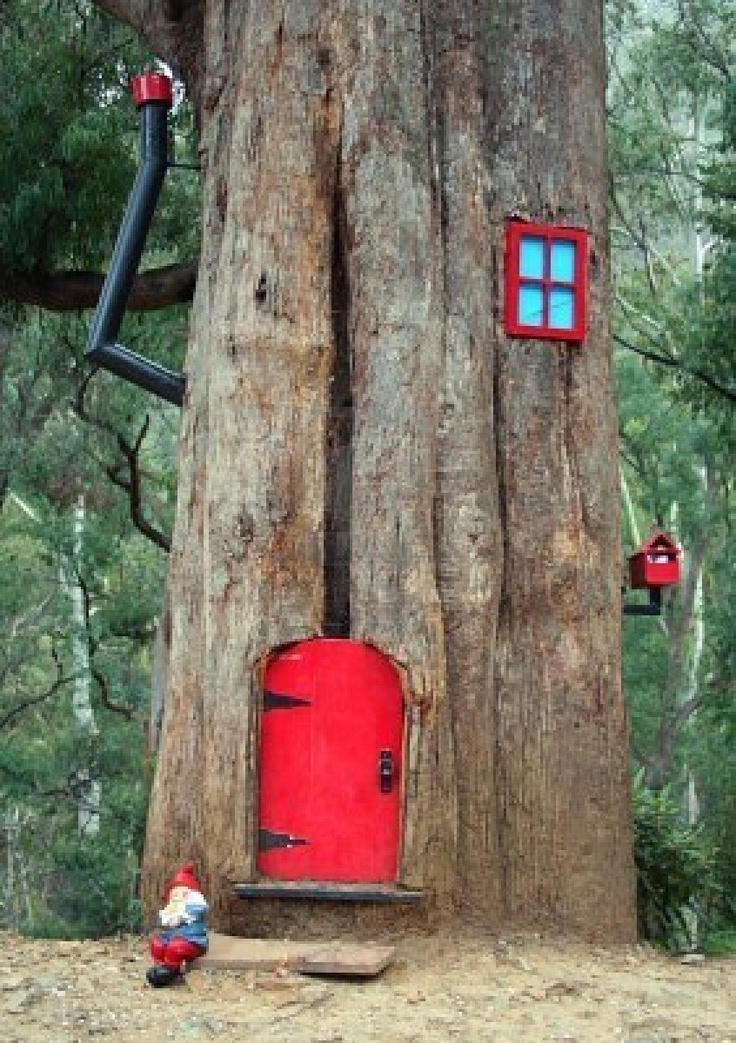 Gnome house in a tree i really want to do this to one of for Gnome doors for trees