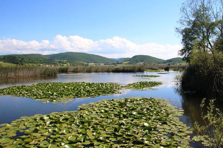Colfiorito natural reserve by Mario Franca