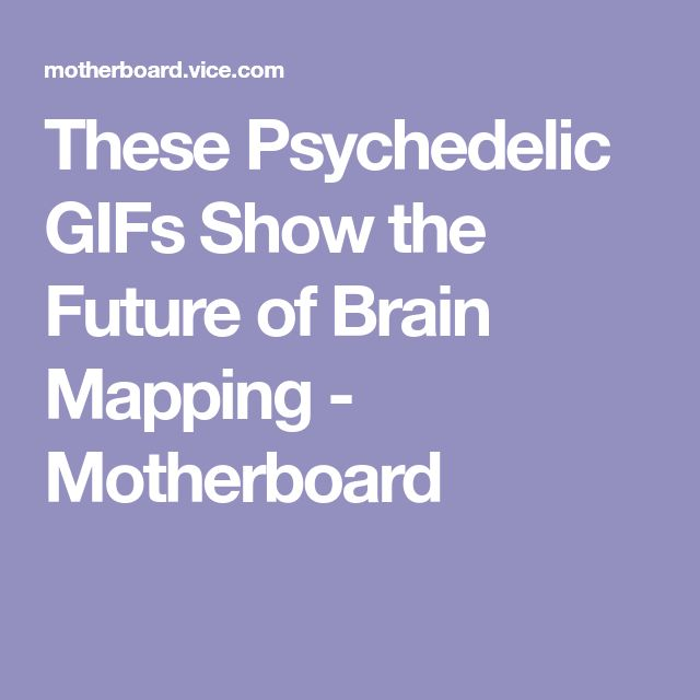 These Psychedelic GIFs Show the Future of Brain Mapping - Motherboard