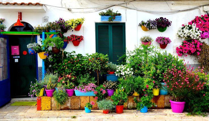 The magic of Bari, Italy