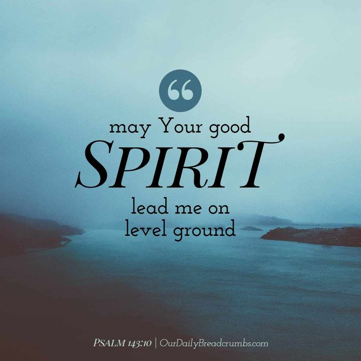 May Your Spirit lead me on level ground. Psalm 143:10    https://www.ourdailybreadcrumbs.com/psalm-143-10/