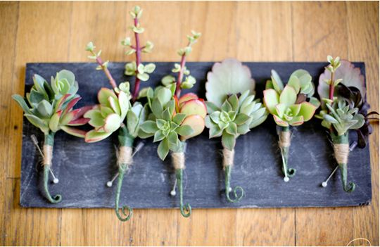 Anything with succulents, especially Boutonnieres, and you have us hooked!