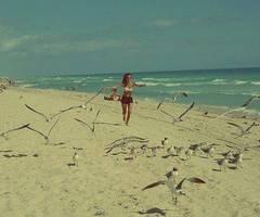 The beach, the sun, the surf..