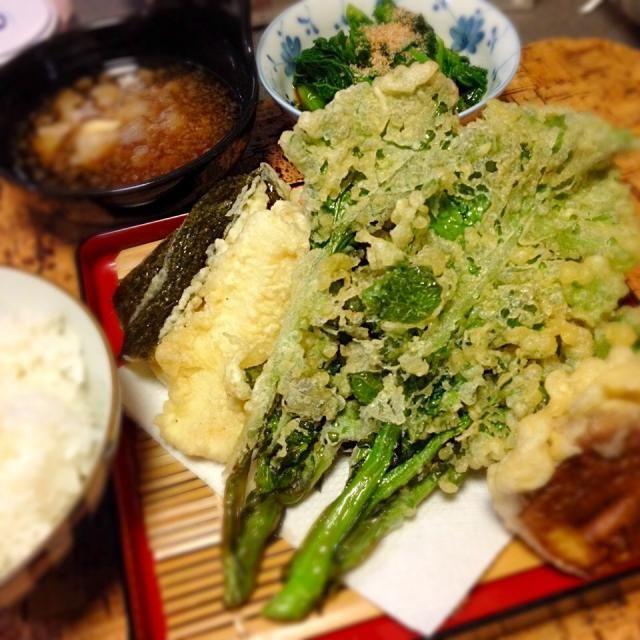 菜の花三昧。 - 22件のもぐもぐ - 菜の花の天ぷら/からし和え by mtyamu