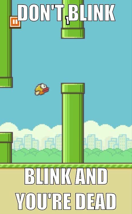 Funny flappy bird memes - photo#30