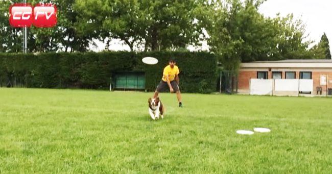Video, Una giornata con Matteo Gaddoni campione del mondo di Disc Dog