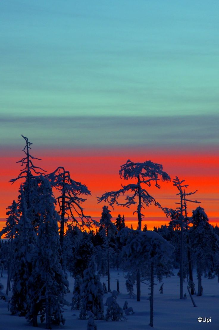 In Lappland, Finland.