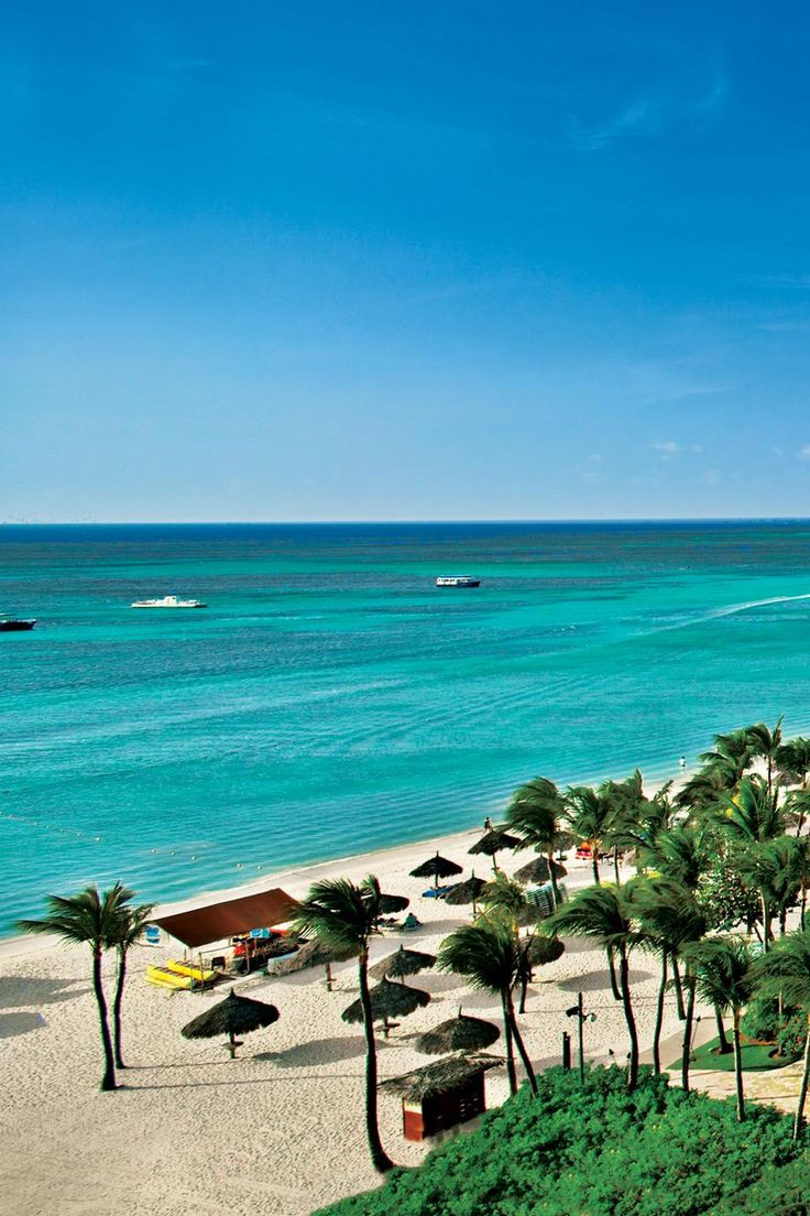 Aruba ...you can see the Atlantic Ocean and the Caribbean meet right off the shore. Atlantic is rough and dark colored. Caribbean is gentle and turquoise colored. First stop on Panama Canal cruise.