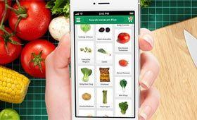 Instacart, aplicación móvil de supermercado online