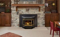 Awesome Fireplace Insert Pellet Stoves Inspirations
