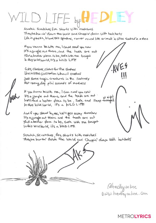 "Hedley's ""Wild Life"" Handwritten Lyrics"