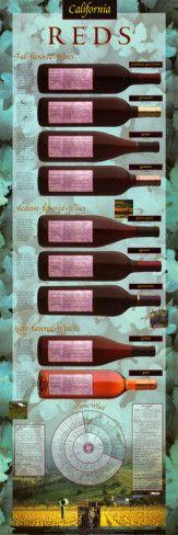 California Reds Educational Wine Infographic