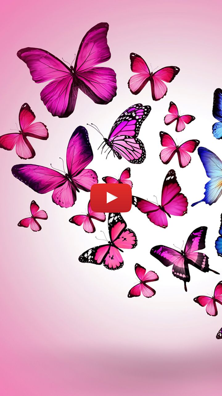 Pastel Pink Butterfly Aesthetic Beautiful Butterflies Photography Awesome Wings Beautiful Butterfly Photography Butterfly Live Live Wallpapers