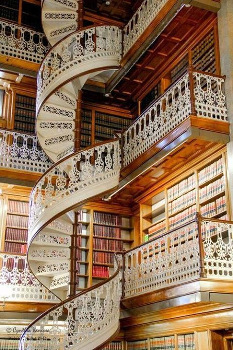Amazing Library in Florence Italy