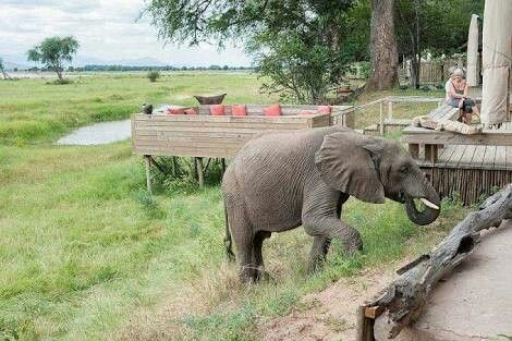 Mana Pools National Park is in the far north of Zimbabwe. It includes the south bank and islands of the Zambezi River, which forms the border with Zambia. The park is known for wildlife visibility beside the river and in the flood plains.....Welcome to Extreme Frontiers - Our website is http://gerhard53.wixsite.com/extreme-frontiers