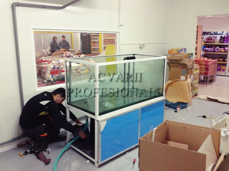 http://www.acvariiprofesionale.ro/acvarii-pescarie/acvariu-supermarket-pastrav.html
