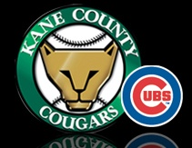 Worksheet. 22 best Kane County Cougars images on Pinterest  Geneva Chicago