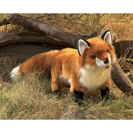 Folkmanis FM2876 Red Fox Puppet.   This cute fox is a little bit cheeky so watch him.   Distributed by Kaleidoscope Australasia.