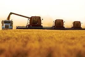harvest I actually got to drive the grain truck along side the combine my Dad was driving one year!