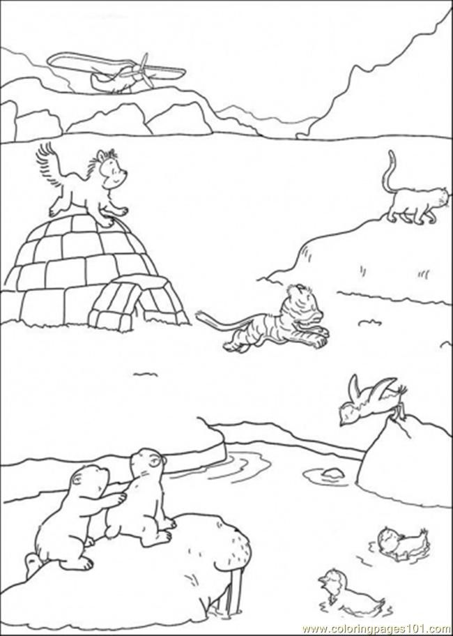 Polar Arctic Animals Coloring Pages Prima(r)tipps