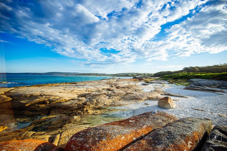 The Bay of The Fires, Tasmania, Australia.  Photo by: Johan Lolos
