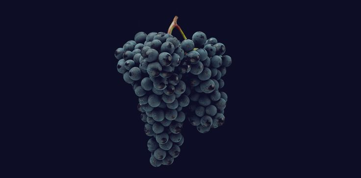 """Ruché (""""roo-kay"""") is not a varietal you'll often see on a wine list, but that's not because Italians are trying to keep it a secret — though we wouldn't blame them if they were. The red wine grape ..."""