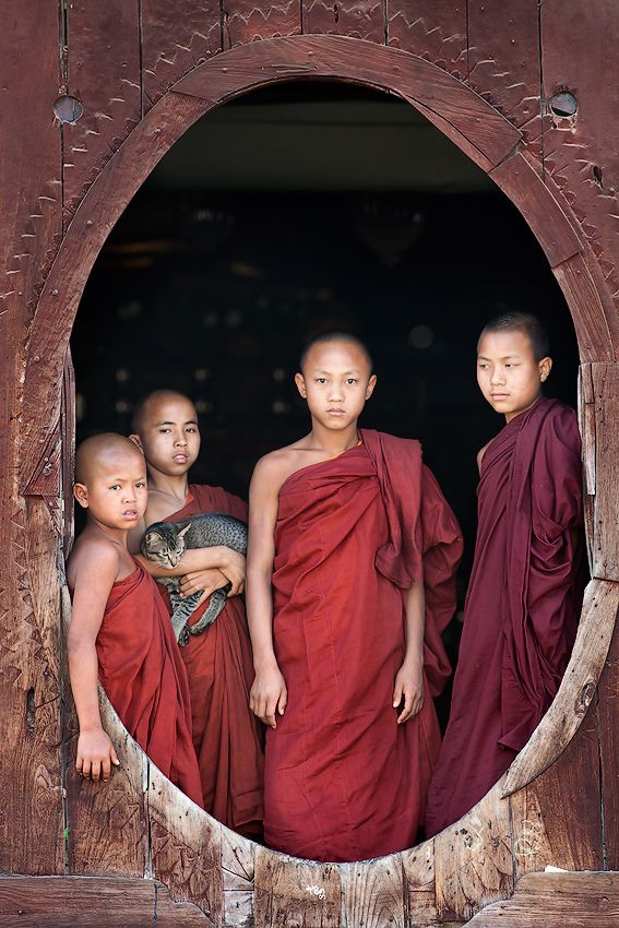 Young monks and their kitten, from the Children of Buddha series, central eastern Burma, photograph by Yury Pustovoy.