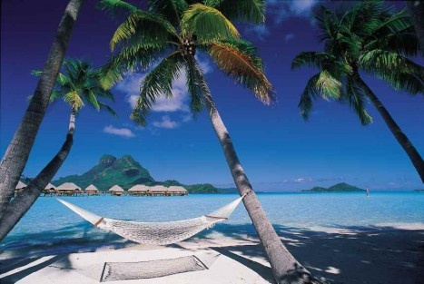 Bora Bora: Tahiti Tourism, Favorite Places, Discover Tahiti, Dreams Vacations, Hammocks, Beautiful Places, Places I D, Best Quality, Dreams Destinations