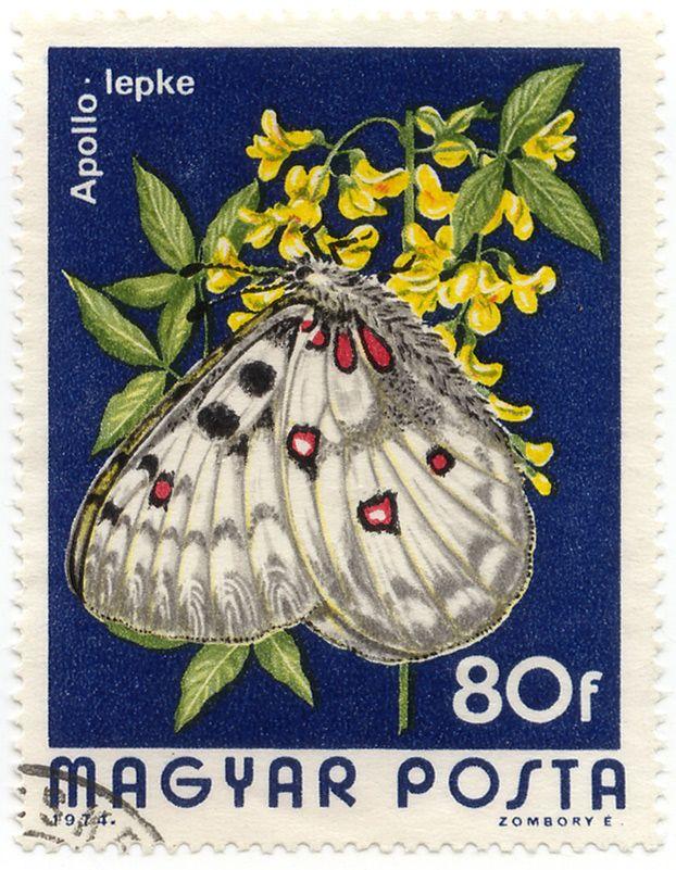 Vintage US Postage Stamps Values | Stamp / bélyeg: Apollo lepke / Hungary 1974 #1923