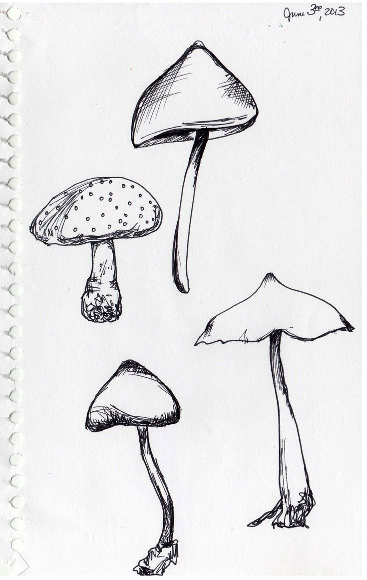 mushroom drawing drawings line mushrooms simple sketchbook stencils kendra shedenhelm templates fungi workshop many outline sketches google making journals crafter