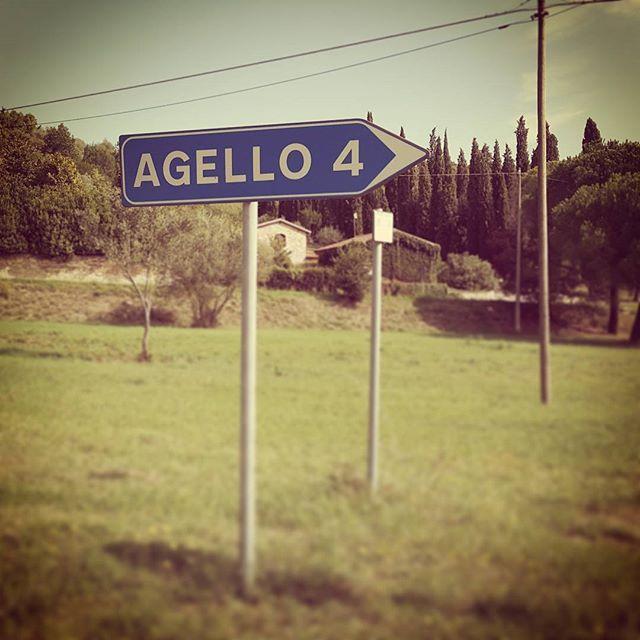 direzione Agello  #roadtrip #umbria #agello #AMAgione #umbriagram #roadsigns #segnali #strade #italia #italy #roadsign #amagio #ita_details #roads #n2l #instago #umbrians #trasimenolake #trasimeno #lagotrasimeno #instago #trip #instagood #instatravel #traveling by ernestoefranco