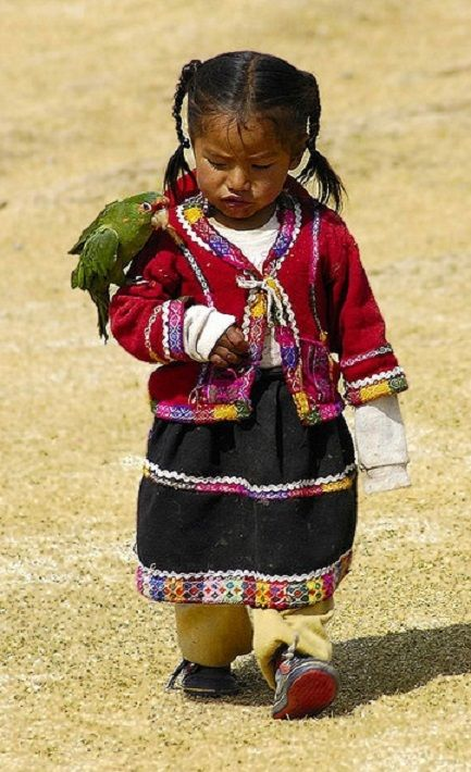 "Peruvian Girl With Parrot, who says:  ""Keep going little 'Persis' we haven't got far to go now...  What song would you like me to sing to you?""                                                    ❤"