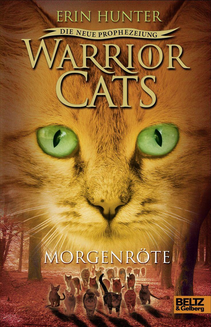 Warrior Cats Die neue Prophezeiung - Morgenröte (Band 3)
