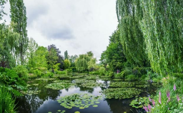 EMU - Linnea i Malerens have  Et undervisningsforløb om Claude Monet