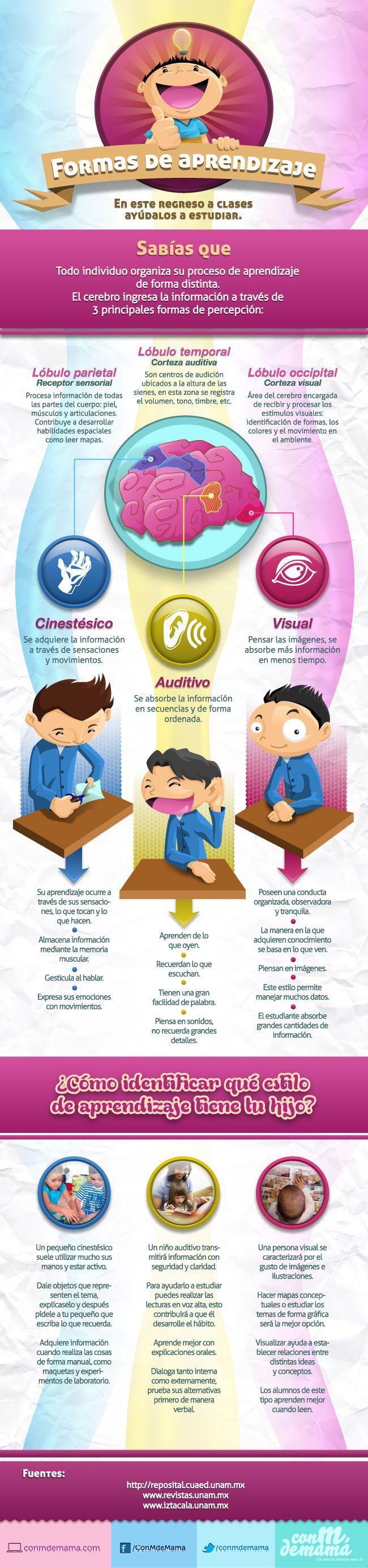 """Hola: Compartimos una interesante infografía sobre """"Aprendizaje - 3 Formas de Percepción Cerebral"""" Un gran saludo.  Visto en: conmdemama.com  Recomendar un tema ____ :) ____ Preguntar/R..."""