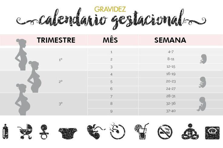 Calendário gestacional – Como calcular semanas, meses e trimestres da gravidez…