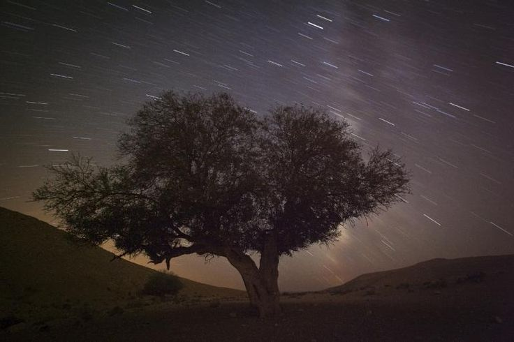 Perseid Meteor Shower 2014 Live Stream: Watch The Perseids Online, Viewing Tips For Stargazers