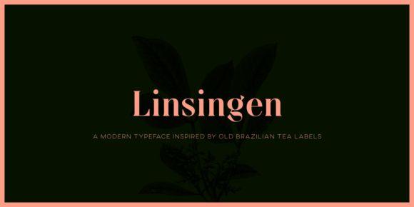 Linsingen (NEW font)   https://fontsdiscounts.com/linsingen-new-font?utm_content=buffer28758&utm_medium=social&utm_source=pinterest.com&utm_campaign=buffer
