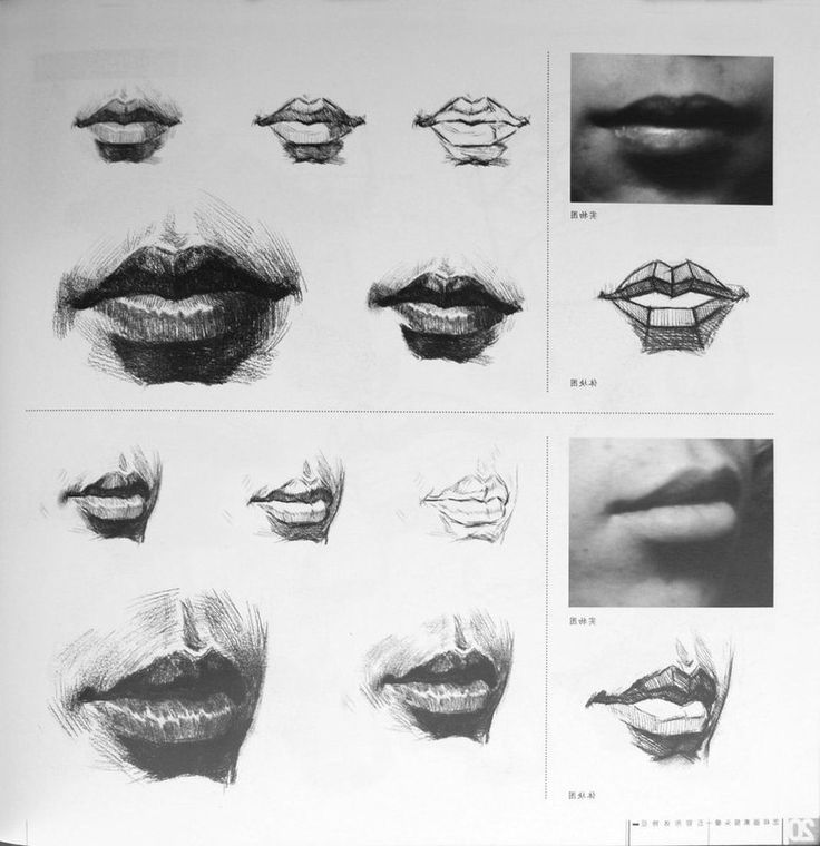 how to draw a human mouth
