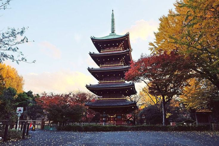 Pagoda Ueno Zoo in Tokyo