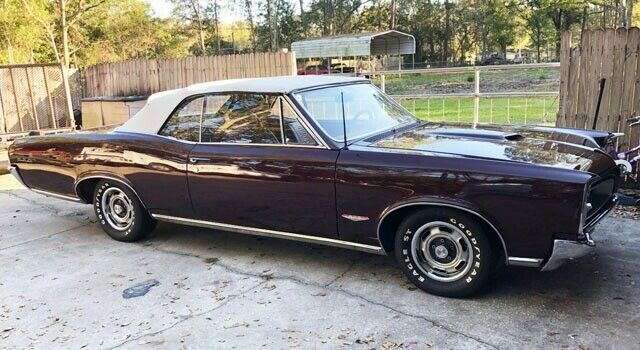 1966 Gto Convertible Phs Docs 389 4 Speed Burgundy Maroon Pontiac Gto With 0 Miles Available Now Pontiac Gto Pontiac Gto