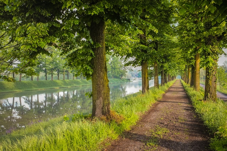 Photograph River path by Simone Messaggi on 500px, upcoming page 6, and growing!    S.