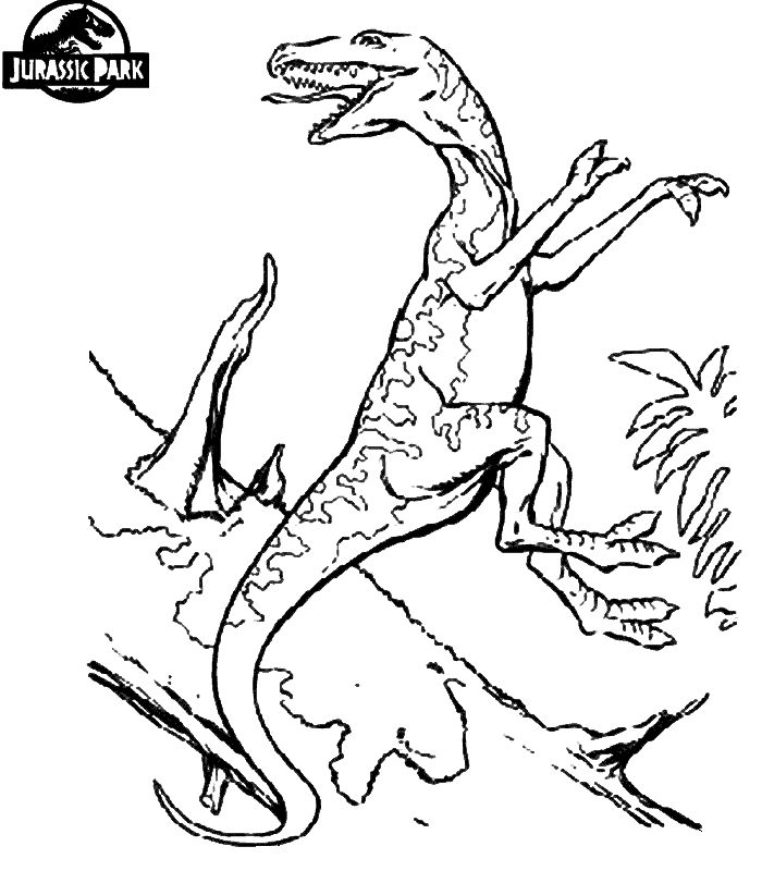17 best images about coloring pages dinosaurs dragons on pinterest coloring pages watercolors. Black Bedroom Furniture Sets. Home Design Ideas
