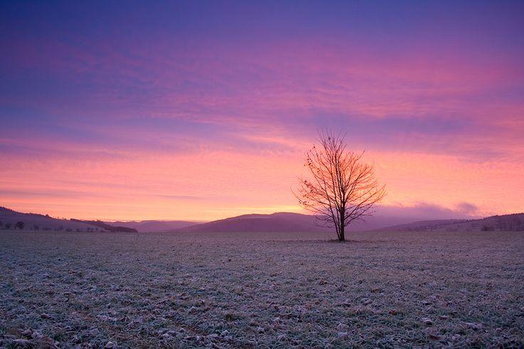 Sonnenaufgang im Spätherbst (Erzgebirge)